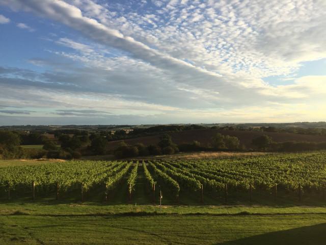 ovens farm winery