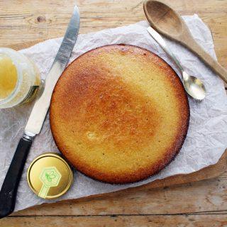 sugar-free, gluten-free, dairy-free honey, polenta, coconut and apple puree cake